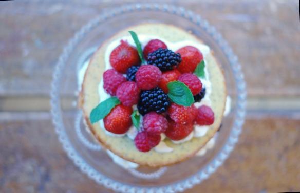 Copenhagencakes citron birkes lagkage 1